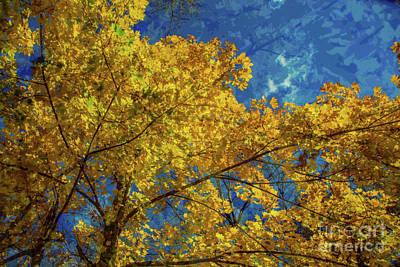 Photograph - Fall Swirls by Rick Bragan
