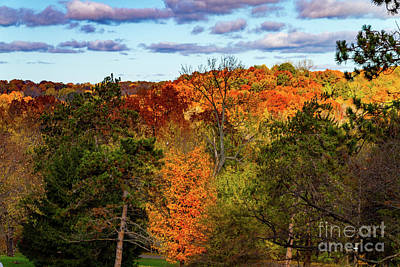Photograph - Fall Takeover by William Norton