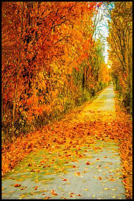 Foliage Photograph - Fall Trail Macomb Orchard Trail by LeeAnn McLaneGoetz McLaneGoetzStudioLLCcom