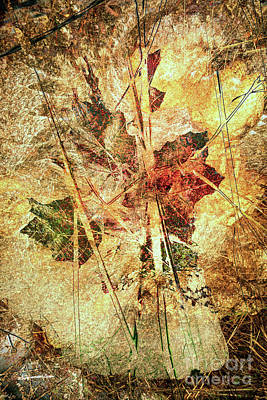 Digital Art - Fall Treasures by Georgianne Giese