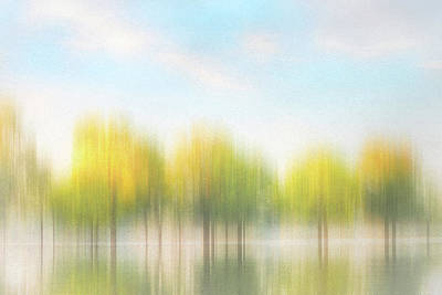 Photograph - Fall Trees On Flooded Lake by Robert FERD Frank