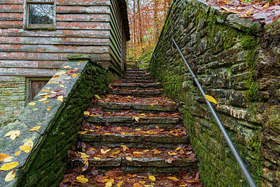 Photograph - Fall Up Stairs by Sharon Popek