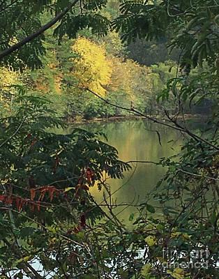 Photograph - Fall View Lake Erin Doraville Ga by Lizi Beard-Ward
