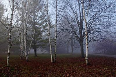 Photograph - Fall Walk In The Fog by Debbie Oppermann
