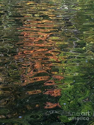 Photograph - Fall Waters 2 by Mark Messenger