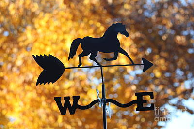 Photograph - Fall Weather Vane by Sheri LaBarr
