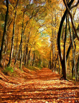 Photograph - Fall Woods by Tom Griffithe