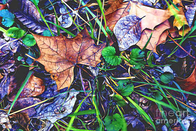 Photograph - Fallen #3 by Patti Schulze