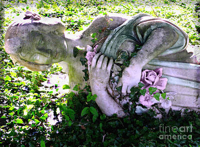 Photograph - Fallen by Colleen Kammerer