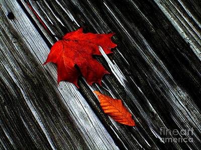 Fallen Art Print by Elfriede Fulda