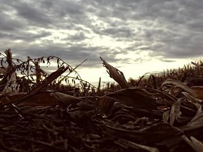 Photograph - Fallen Fields by Kyle West