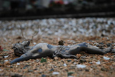 Crusifix Photograph - Fallen by Hans Kool