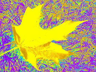 Digital Art - Fallen Leaf by Susan Lafleur