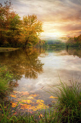 Photograph - Fallen Leaves At Dawn by Debra and Dave Vanderlaan