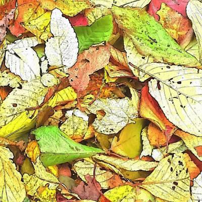 Digital Art - Fallen Leaves by Kumiko Izumi