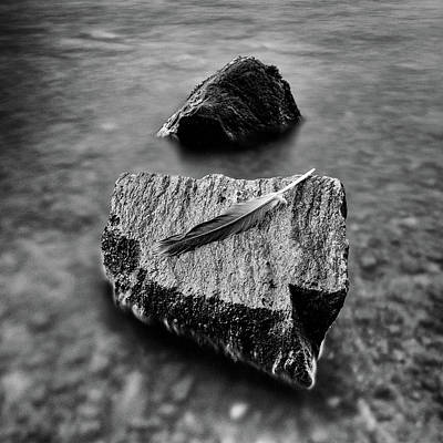 Photograph - Feather Rock by Mark Boadey