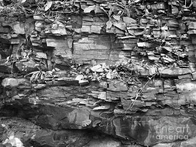 Photograph - Fallen Rocks by Reb Frost