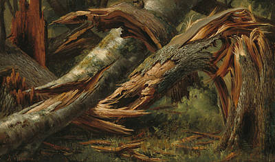 Fallen Tree Art Print by Alexandre Calame