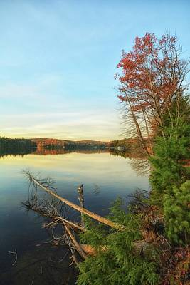 Photograph - Lake Of Bays by Karl Anderson