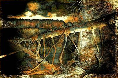 Photograph - Fallen Tree by Lilia D