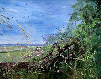 Fallen Tree Art Print by Muriel Law