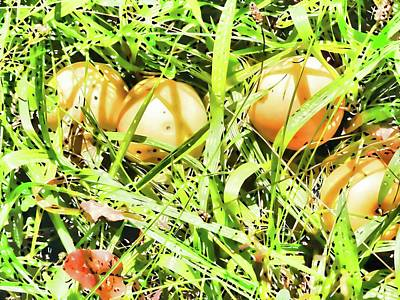 Yield Painting - Fallen Yellow Apples On The Ground by Lanjee Chee