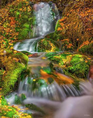 Photograph - Fallert Creek Autumn by Leland D Howard