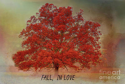 Photograph - Fall,,in Love by Geraldine DeBoer