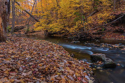Photograph - Fall In Michigan 1 by Pravin Sitaraman