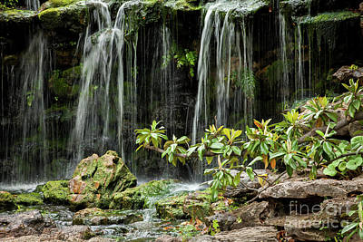 Photograph - Falling Falls In The Garden by Iris Greenwell