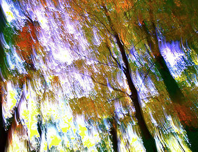 Photograph - Falling by Gwendolyn Christopher