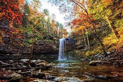 Photograph - Falling Into Fall Cloudland Canyon by Debra and Dave Vanderlaan