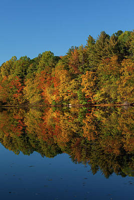 Changing Of The Seasons Photograph - Falling Into The Reflection by Karol Livote