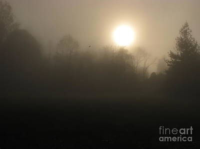 Falling Leaf In Morning Fog Art Print by Misha Bean