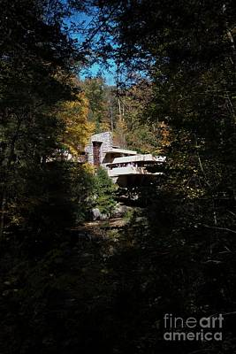 Photograph - Fallingwater - 3 by David Bearden