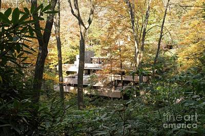 Photograph - Fallingwater - 4 by David Bearden