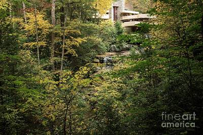 Photograph - Fallingwater - 5 by David Bearden