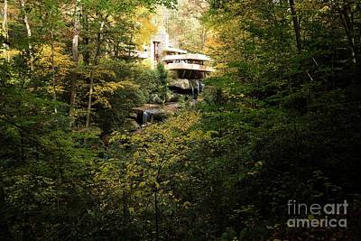 Photograph - Fallingwater - 6 by David Bearden