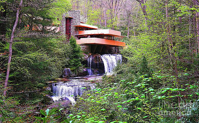 Photograph - Fallingwater by Traci Law