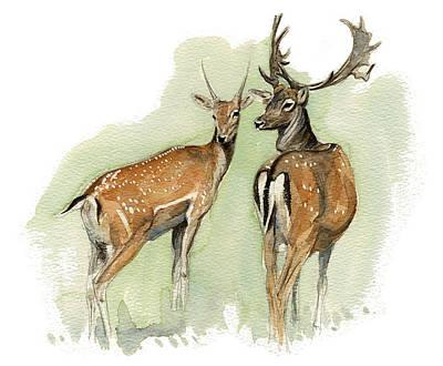 Fallow Deer Painting - Fallow Deer by Chris Pendleton