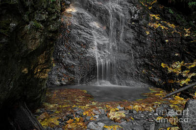 Photograph - Falls And Leaves by Rod Wiens