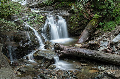 Photograph - Falls And Logs by Rod Wiens