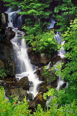 Photograph - Falls At Bent Run Creek - Waterfall Water Fall Landscape by Jon Holiday