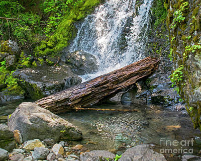 Photograph - Falls Creek 0742 by Chuck Flewelling
