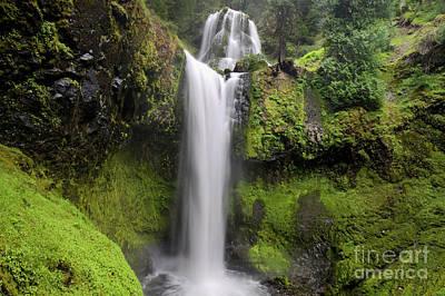 Falls Creek Falls In Washington  Art Print