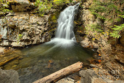 Photograph - Falls Creek Falls Plunge Pool by Adam Jewell