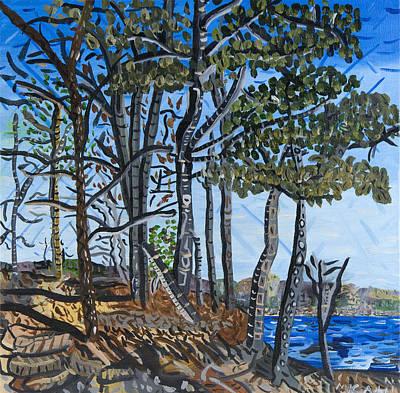 Falls Lake At Blue Jay Point Art Print by Micah Mullen