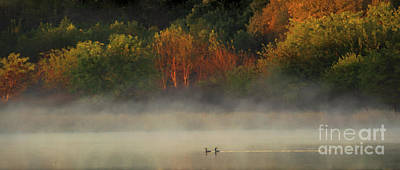Photograph - Fall's Morning by Elizabeth Winter
