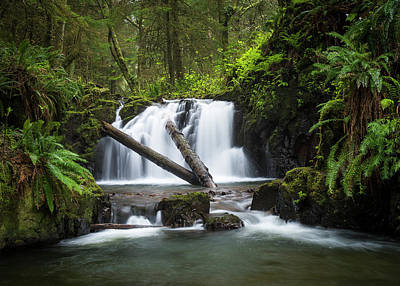 Photograph - Falls On Canyon Creek by Robert Potts