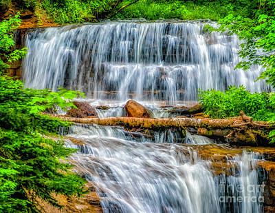 Art Print featuring the photograph Falls On Sable Creek by Nick Zelinsky